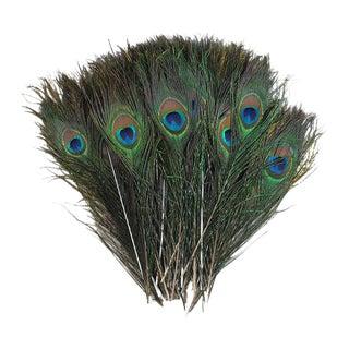 Peacock Feather Décor - 50 Pieces
