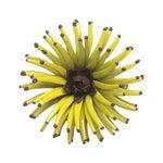 Image of Yellow Chrysanthemum Brooch