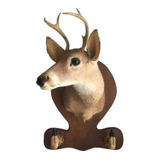 Deer Head & Hoof Rack Wall Mount
