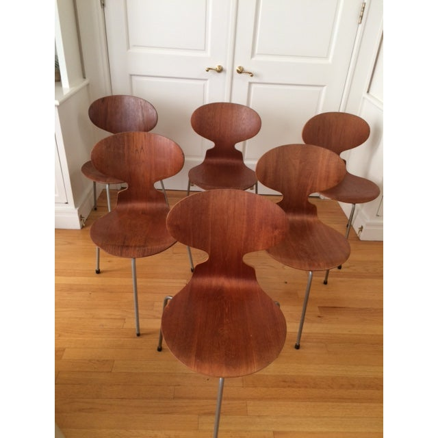 Arne Jacobsen Ant Dining Chairs - Set of 6 - Image 2 of 7