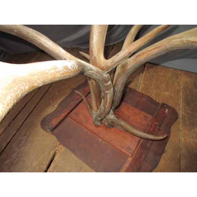 Oak Top Table With Antler Base - Image 6 of 6