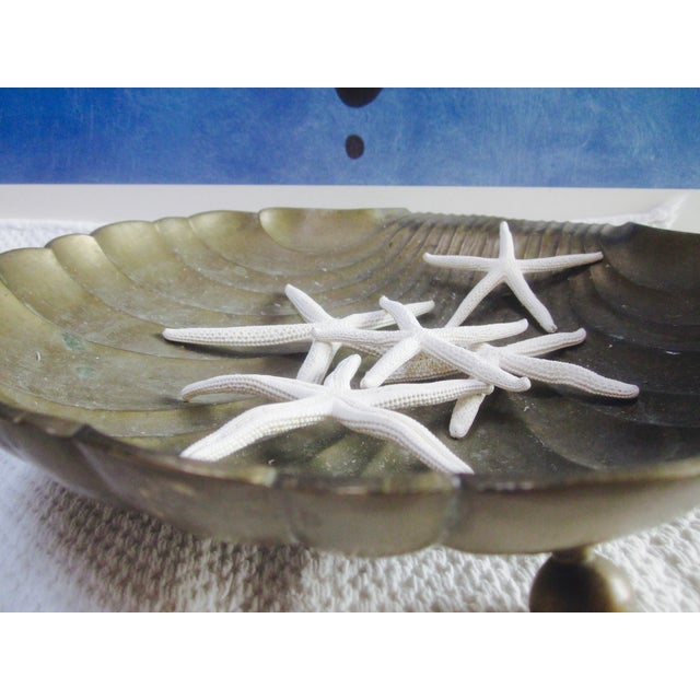 Image of Brass Clamshell Clam Shell With Starfish