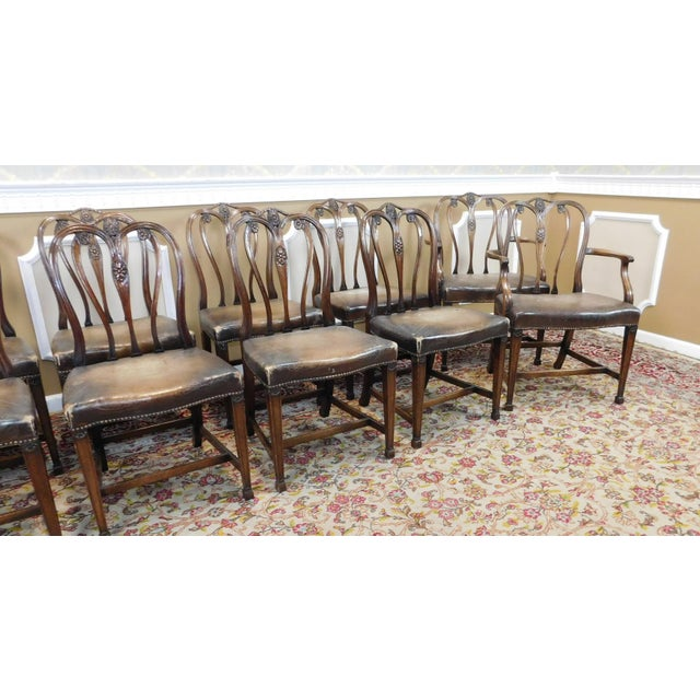 1930s Carved Mahogany Sheraton Style Dining Chairs Set 12 Chairish