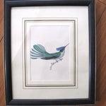 Image of Vintage Bird Lithographs - Set of 3
