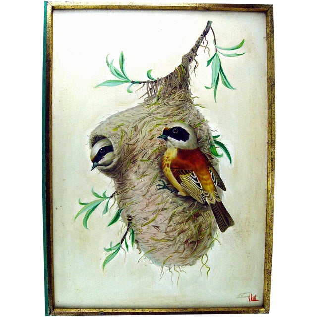 "Image of ""Weaver Bird & Nest"" Oil on Canvas"