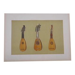 Antique Lithograph Musical Instruments, Mandolins