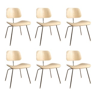 Herman Miller Dcm Chairs in White Ash - Set of 6
