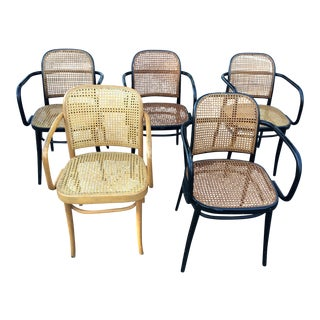 Mid-Century Modern Cane Thonet Dining Chairs - Set of 5