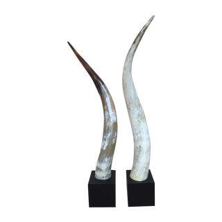Decorative Horns - A Pair