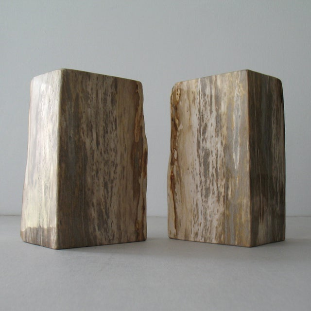 Petrified Wood Bookends - Pair - Image 4 of 9