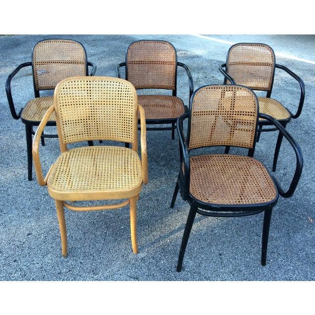 Sining Room Chairs Sale
