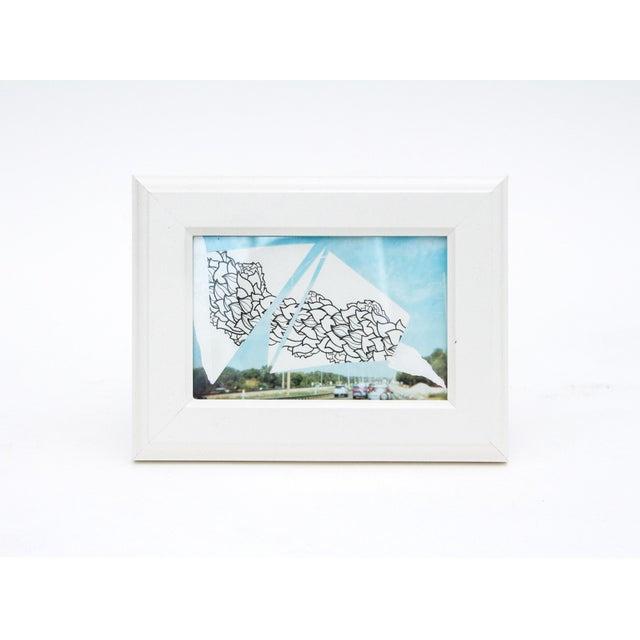 Framed Original Leaf Drawing & Photograph Collage - Image 2 of 5