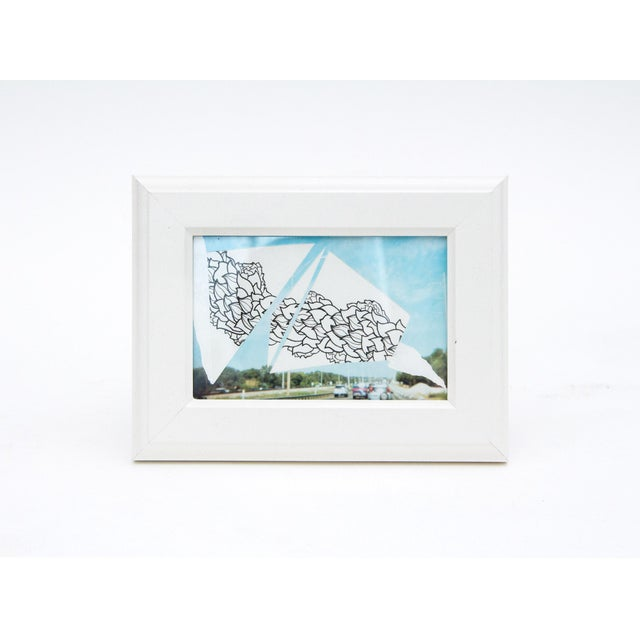 Image of Framed Original Leaf Drawing & Photograph Collage