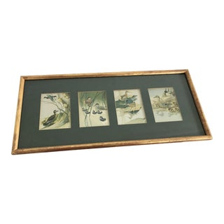 Vintage Duck Prints - Set of 4