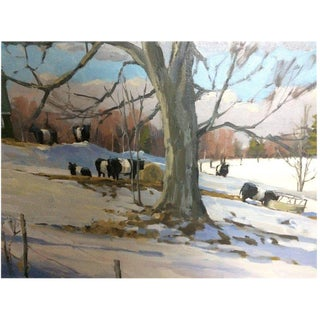 Large Plein Air Painting of Maine Oreo Cows