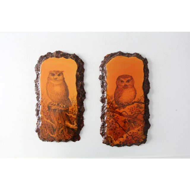 1970's Owl Paintings on Lacquered Wood - Pair - Image 2 of 9