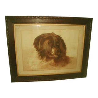 English St. Bernard Dog Framed Watercolor, 19th Century