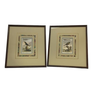 French Bird Copper Engravings - A Pair