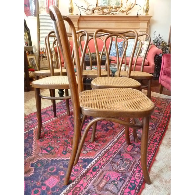 Vintage Bentwood and Cane Cafe Dining Chairs - Set of 6 - Image 7 of 10