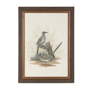 """Birds in the Bramble"" Artist Print"