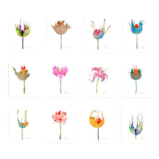 Premium Giclee Prints of Botanical Grouping Set of 12