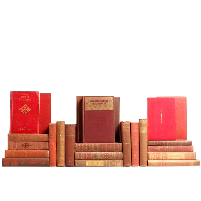 Image of Distressed Clay Classic Books - Set of 24
