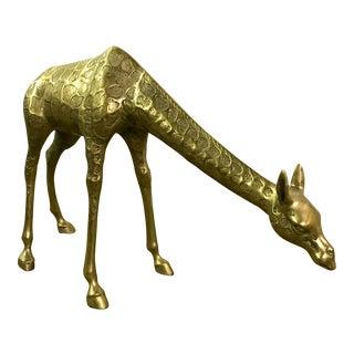 """XL """"Baby"""" Bending Brass Giraffe"""