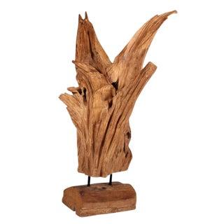 Wild Asian Teak Tree Root Sculpture