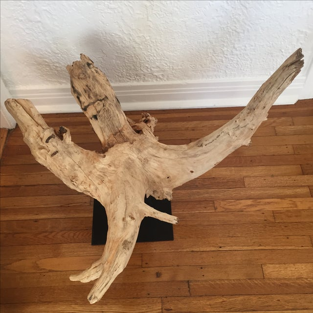 HD Buttercup Oversized Driftwood on Stand - Image 4 of 9