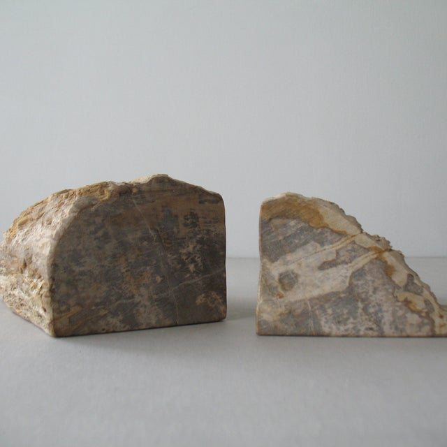 Petrified Wood Bookends - Pair - Image 9 of 9
