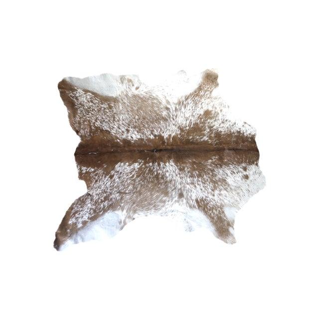 "Image of Small Brazilian Fawn Calf Hide Rug - 3'1"" X 3'6"""