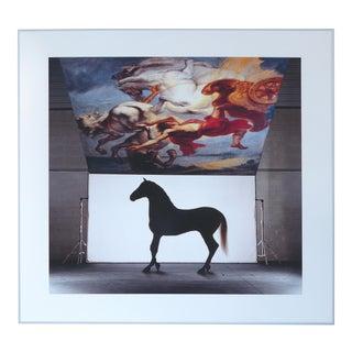 Peter Mueller Horse Photograph