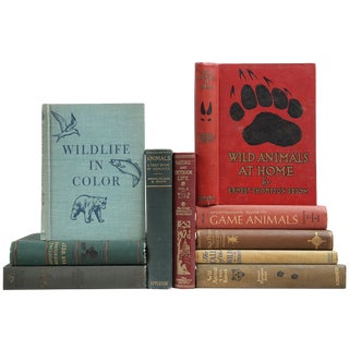 Cabin Book Decor: Great Outdoors Book Stack - Set of 10