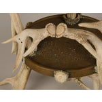 Image of Circular Display Platform Enclosed with Hand Assembled Shed Antler Horn from Scotland c.1875