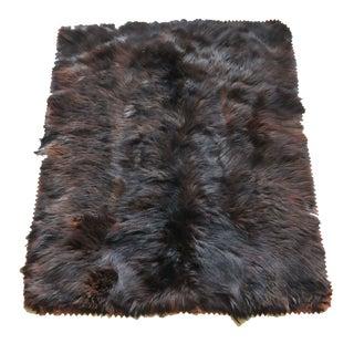 "Vintage Bear Skin Rug - 4' x 4' 6"""