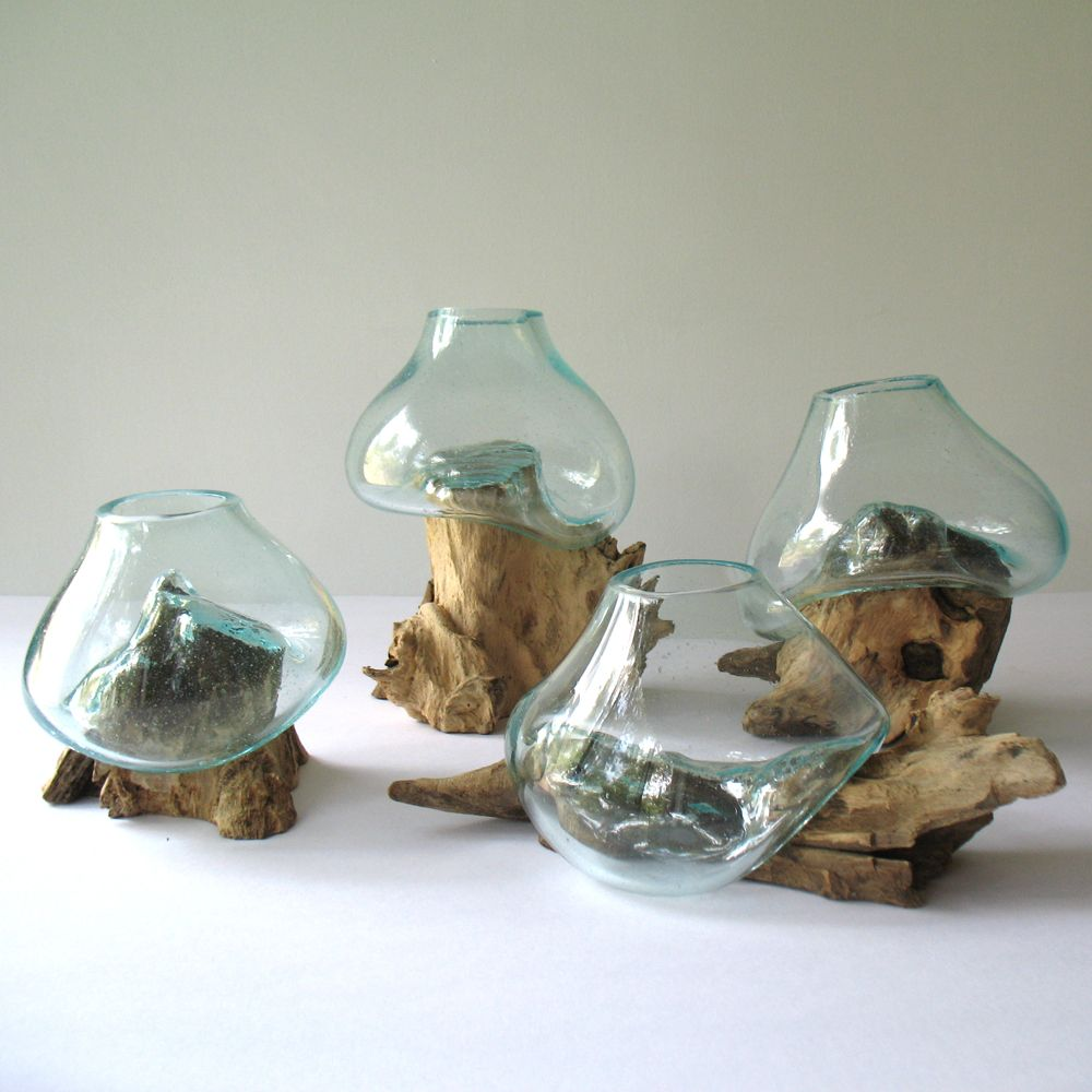 Home decor planters molten glass on driftwood terrarium