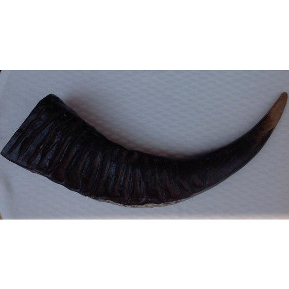 Synthetic Resin Rhino Horn - Image 3 of 6