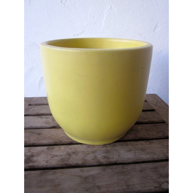 Gainey Architectural Pottery Yellow Planter Pot - Image 6 of 6