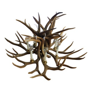 Antique Western Antler Chandelier