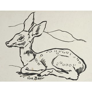Fawn Pen & Ink Drawing