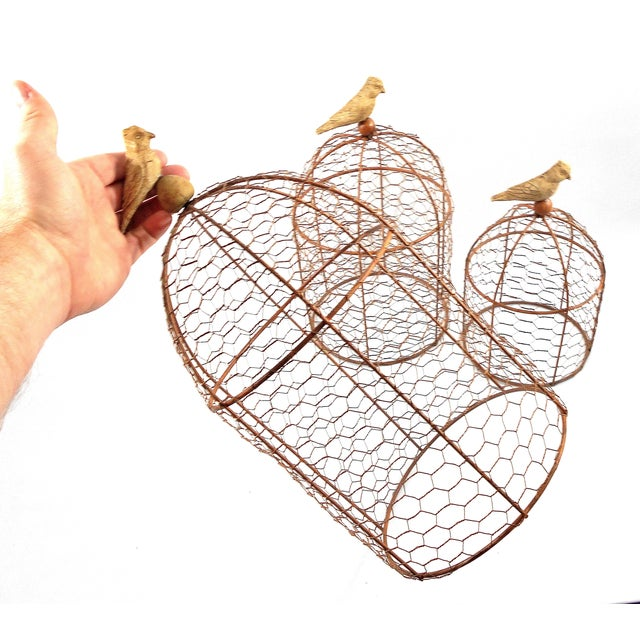 Decorative Wire Garden Cloches - Set of Three - Image 3 of 4