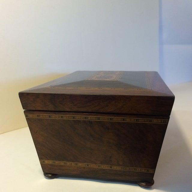 Image of Brazilian Rosewood Double Tea Caddy