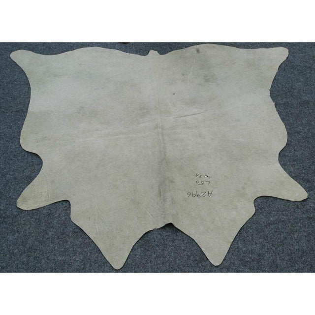 Cow Hide Rug - 4′2″ × 4′5″ - Image 4 of 4