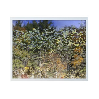 "Michael Filonow ""Reflection 33"" Framed Photo Print"