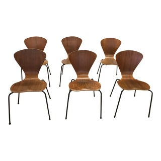 Mid-Century Modern Bentwood Chairs - Set of 6