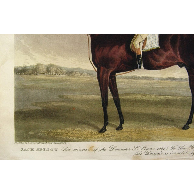 Racehorse Portrait Etching, 1822 - Image 3 of 4