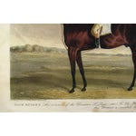 Image of Racehorse Portrait Etching, 1822
