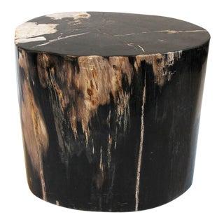 Petrified Wood Stool