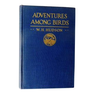 1920 Adventures Among Birds by W.H. Hudson