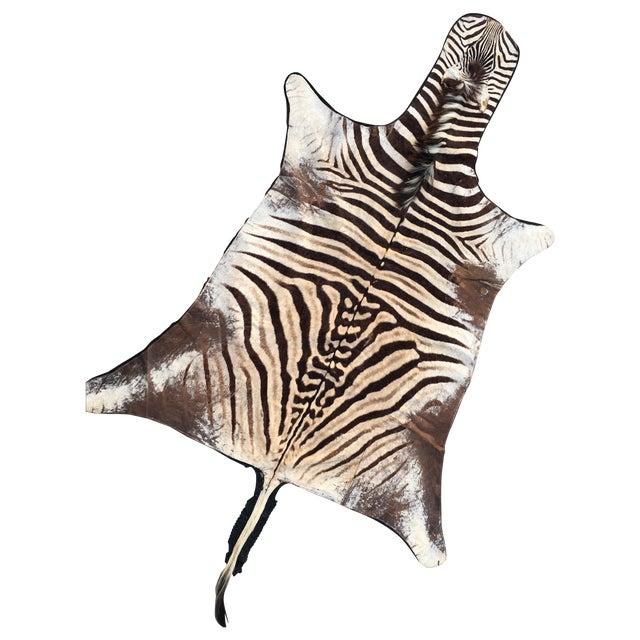 Vintage Zebra Hide Rug - Image 1 of 7